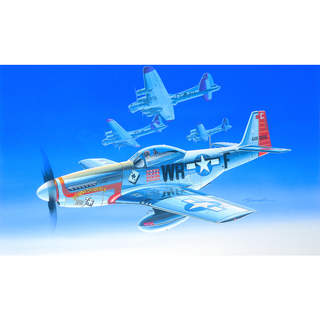 Academy North American P-51D (1:72)